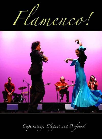 Cover_Flamenco Book_400_WEB