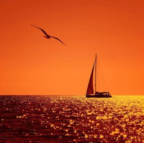 sails.jpg1